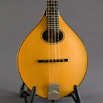 Collings MT O Honey Tortoise