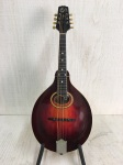 Used Gibson A4
